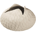 Vase design AsaN5